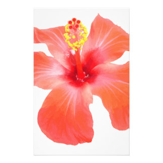 Red Hibiscus Vector Isolated Stationery Design