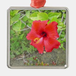 Red Hibiscus Yellow stigma Silver-Colored Square Ornament