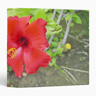 Red Hibiscus Yellow stigma Vinyl Binders