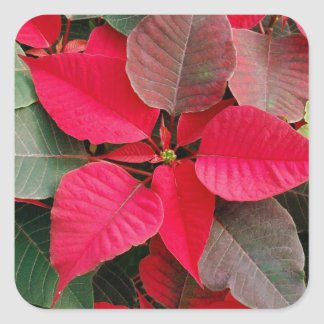 Red Holiday Floral Sticker