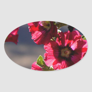 Red Hollyhocks in a summer garden Oval Sticker
