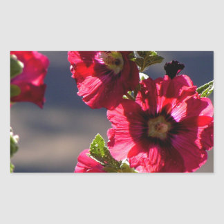 Red Hollyhocks in a summer garden Sticker