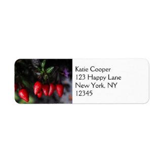 Red Hot Garden Salsa Chili Peppers. Return Address Label