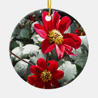 red hot pink daisy / daisies flowers round ceramic ornament