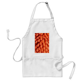 Red Hot Poker Flower Standard Apron