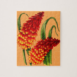 red hot pokers jigsaw puzzle