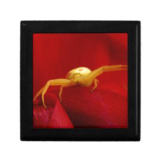 Red Hot Spider Keepsake Box