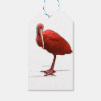 Red Ibis give this to the bird lover in your life Pack Of Gift Tags