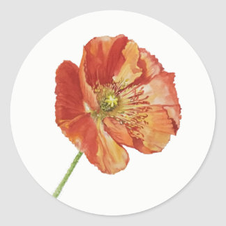 Red Icelandic Poppy Stickers