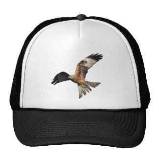 Red Kite - Milvus milvus Trucker Hat