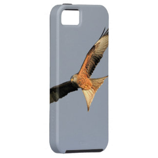Red Kite Raptor Case For The iPhone 5