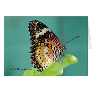 Red Lacewing Buterfly Card