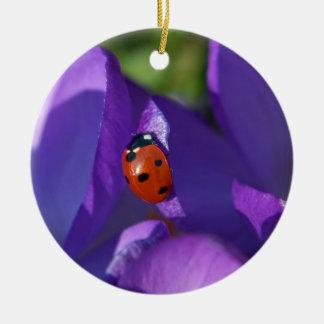 Red ladybird on crocus round ceramic ornament