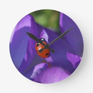 Red ladybird on crocus round clock