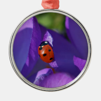 Red ladybird on crocus Silver-Colored round ornament
