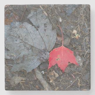 Red Leaf Stone Coaster