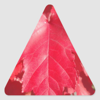 Red Leaf Triangle Sticker
