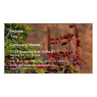 Red Leaves In Zion National Park Business Card