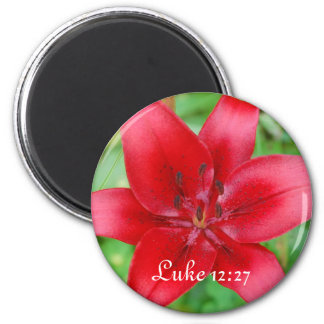 Red Lily Magnet Luke 12:27