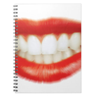 Red lips notebooks
