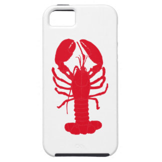 Red Lobster Tales iPhone 5 Cover