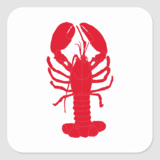Red Lobster Tales Square Sticker