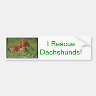 Red Long Haired Dachshund Bumper Sticker