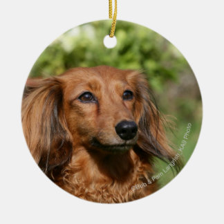 Red Long-haired Miniature Dachshund Ceramic Ornament