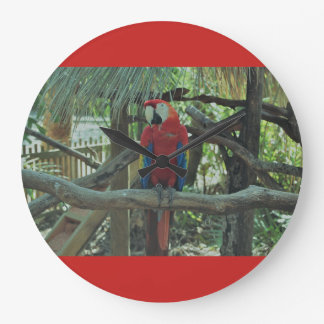 Red Macaw clock