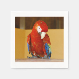 Red Macaw Paper Napkin