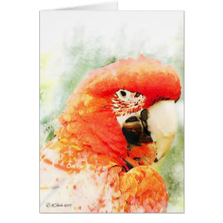 Red Macaw Watercolor Greeting Card
