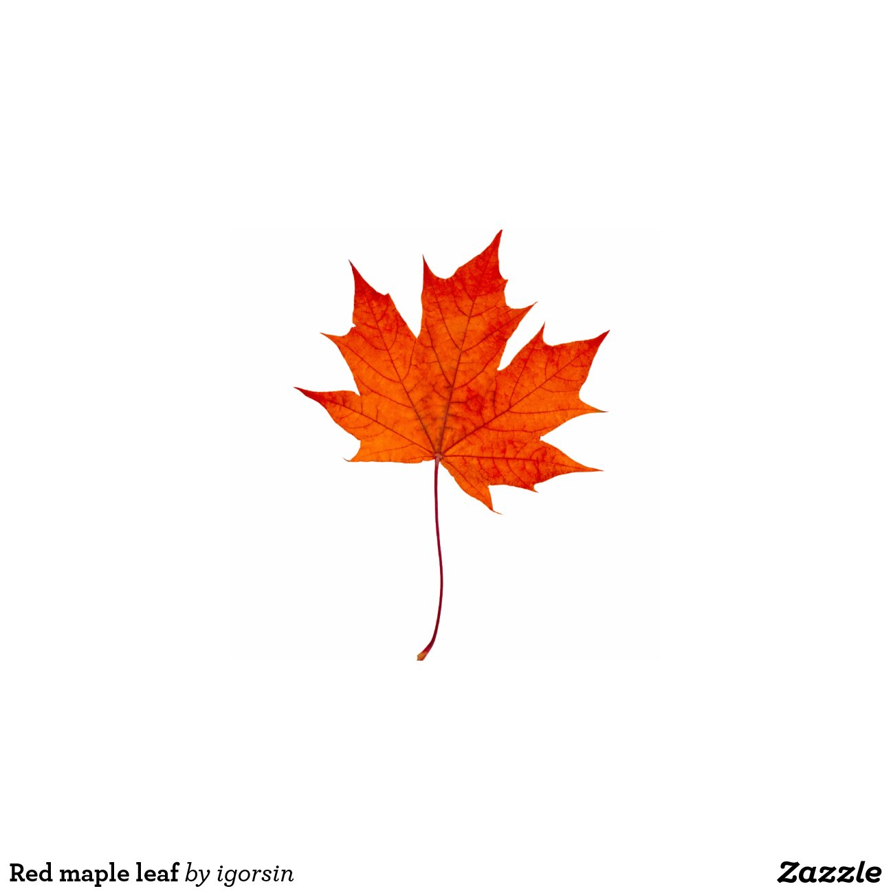 Red maple leaf zazzle