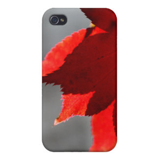 Red Maple Leaf iPhone 4 Case