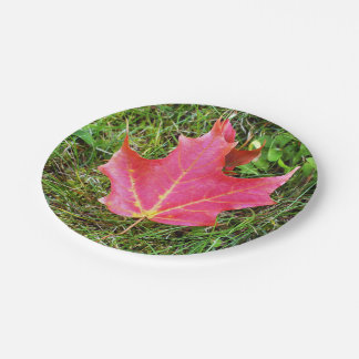 Red Maple Leaf on Grass Paper Plate