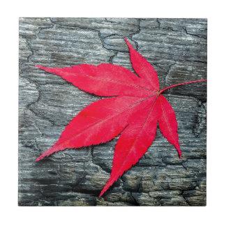 Red maple leave on black burnt wood ceramic tiles