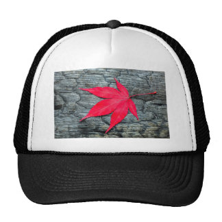 Red maple leave on black burnt wood trucker hat