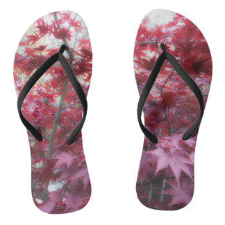 Red Maple Leaves Flip Flops