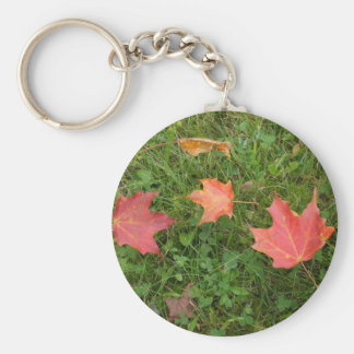 Red Maple Leaves on Grass Keychain