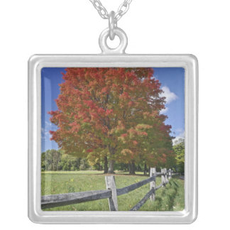 Red Maple tree in autumn colors, near Concord, 2 Silver Plated Necklace