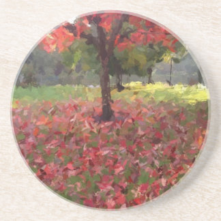 Red Maple Tree Photography Beverage Coasters