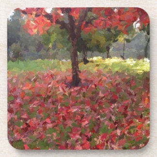 Red Maple Tree Photography Drink Coasters
