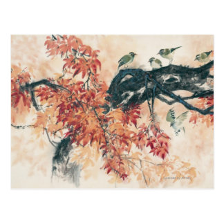Red Maples Postcard
