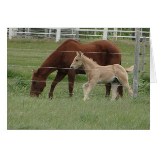 Red Mare & Blonde Filly Card
