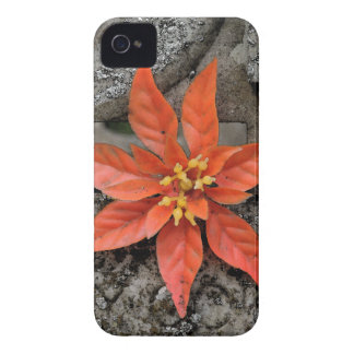RED MARY iPhone 4 CASES