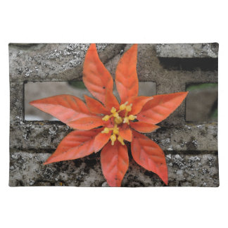 RED MARY PLACEMAT