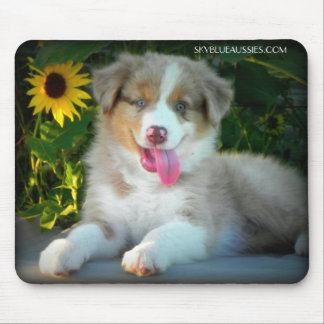 Red Merle Puppy Mouse Pad