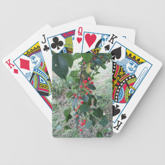 Red Montmorency cherries on tree in cherry orchard Bicycle Playing Cards