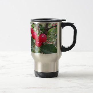 Red Montmorency cherries on tree in cherry orchard Travel Mug