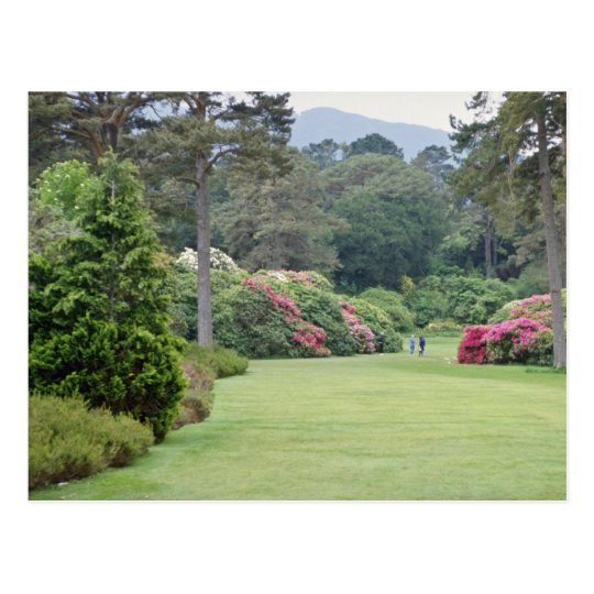 Red Muckross House Gardens, Ireland flowers Postcard