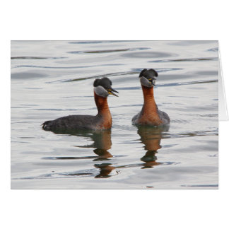 Red-necked Grebe III Card